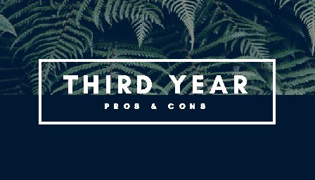 Third Year: Pros and Cons