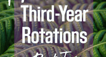 Tips for Third-Year Rotations: Part Two