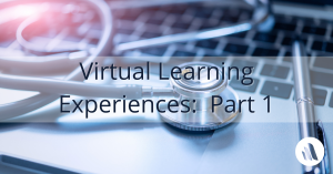 Virtual Learning Experiences:  Part 1